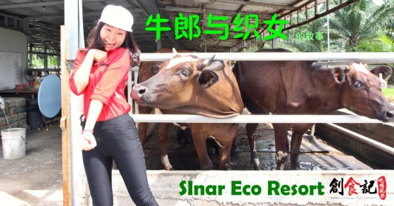 创食记 @ Sinar Eco Resort Pekan Nanas Johor Malaysia Family Gathering Camp Travel Adventure Tourist Attraction