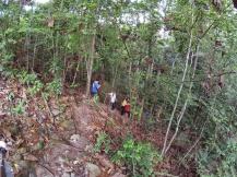 山里的故事 峇株巴辖 龙华山庄 后山 Gunung Puncak Batu Pahat Johor Malaysia Raymond Ong A07