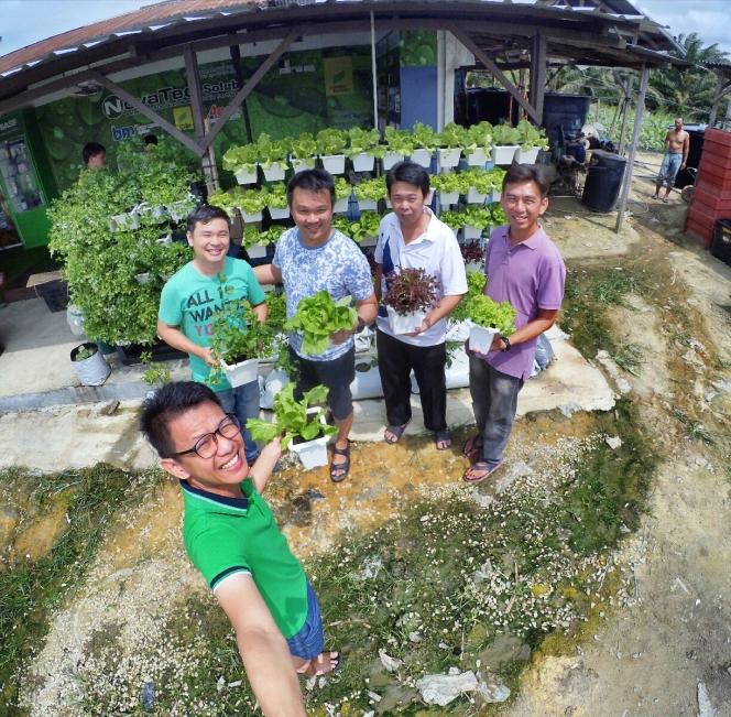 Malaysia Johor Batu Pahat Urban Farming Rhyna DIY Planting Vegetables 马来西亚 柔佛 峇株巴辖 绿纳 城市农场 直立式家居菜蔬种植 A01