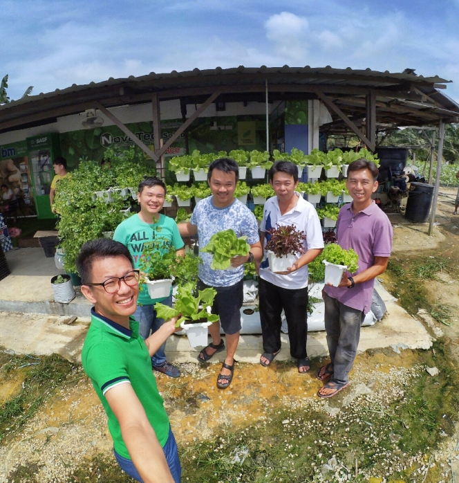 Malaysia Johor Batu Pahat Urban Farming Rhyna DIY Planting Vegetables 马来西亚 柔佛 峇株巴辖 绿纳 城市农场 直立式家居菜蔬种植 A02