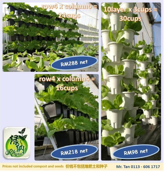 Malaysia Johor Batu Pahat Urban Farming Rhyna DIY Planting Vegetables 马来西亚 柔佛 峇株巴辖 绿纳 城市农场 直立式家居菜蔬种植 A04