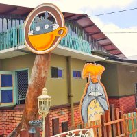 Latest TOTORO Theme Cafe hangout in Batu Pahat!