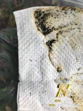 Malaysia MNE International Pembunuh Nyamuk dan Telur Nyamuk dan Serangga Mencegah Nyamuk Aedes Alat Membunuh Nyamuk Berkuasa Solar untuk Rumah Keluarga Kilang Pejabat Contoh dan Hasil Pr