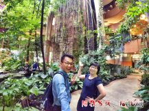 Raymond Ong Effye Ang work together Fighting for Future Crazy Life 陪我发疯 陪我癫 Garden of One Utama Shopping Centre Center Kuala Lumpur A18