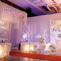 Kiong Art Wedding Event