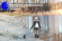 Pet Insurance Malaysia Johor Batu Pahat Agensi Pekerjaan Unilink Prospects SB Wisma V Cat Insurance Malaysia Dog Insurance Malaysia Johor Batu Pahat Your pet is part of your family Insure your pet today A02