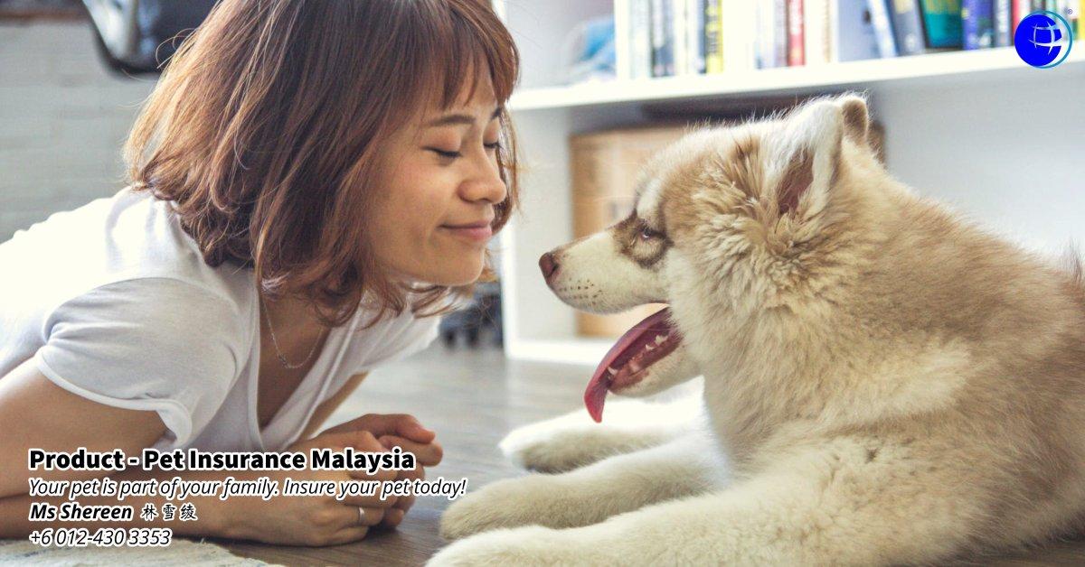 Pet Insurance Malaysia