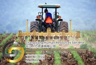 Chang Jiang Human Resources Johor Malaysia Foreign Worker Permit Passport Insurance Consultation Rehiring Workers and Maids EPA01-103