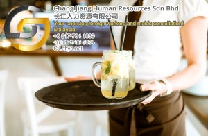 Chang Jiang Human Resources Johor Malaysia Foreign Worker Permit Passport Insurance Consultation Rehiring Workers and Maids EPA01-36