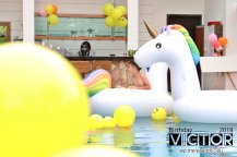 Victor Lim Birthday 2018 in Malaysia Party Buffet Swimming Fun A05