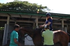 Unilink Group Company Trip 2018 April from Agensi Pekerjaan Unilink Prospects Sdn Bhd Horse Riding at Johor Bahru 21