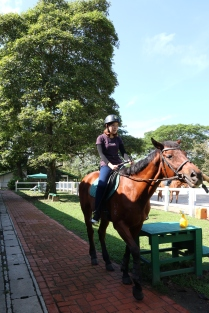 Unilink Group Company Trip 2018 April from Agensi Pekerjaan Unilink Prospects Sdn Bhd Horse Riding at Johor Bahru 30