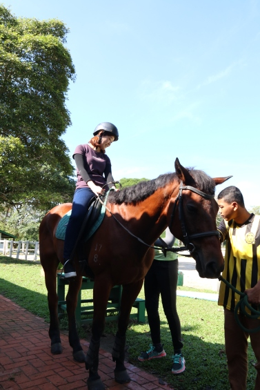 Unilink Group Company Trip 2018 April from Agensi Pekerjaan Unilink Prospects Sdn Bhd Horse Riding at Johor Bahru 31