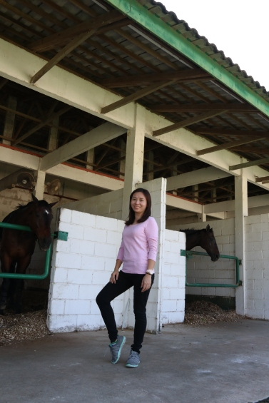 Unilink Group Company Trip 2018 April from Agensi Pekerjaan Unilink Prospects Sdn Bhd Horse Riding at Johor Bahru 40
