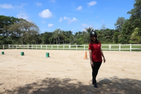 Unilink Group Company Trip 2018 April from Agensi Pekerjaan Unilink Prospects Sdn Bhd Horse Riding at Johor Bahru 50