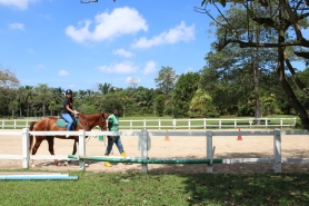 Unilink Group Company Trip 2018 April from Agensi Pekerjaan Unilink Prospects Sdn Bhd Horse Riding at Johor Bahru 57
