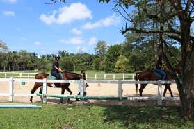 Unilink Group Company Trip 2018 April from Agensi Pekerjaan Unilink Prospects Sdn Bhd Horse Riding at Johor Bahru 58