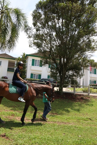 Unilink Group Company Trip 2018 April from Agensi Pekerjaan Unilink Prospects Sdn Bhd Horse Riding at Johor Bahru 94