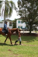 Unilink Group Company Trip 2018 April from Agensi Pekerjaan Unilink Prospects Sdn Bhd Horse Riding at Johor Bahru 95