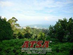 Batu Pahat Sports Ricky Toh Advance Taekwondo Sport Academy ATSA Education Martial Art Self Defence Fitness Poomdae Sparring Kyorugi Batu Pahat Johor Malaysia A03-04