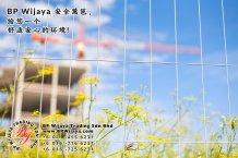 BP Wijaya Trading Sdn Bhd 马来西亚 彭亨 关丹 淡马鲁 文德甲 安全 篱笆 制造商 提供 篱笆 建筑材料 给 发展商 花园 公寓 住家 工厂 果园 社会 安全藩篱 建设 A01-48