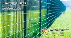 BP Wijaya Trading Sdn Bhd 马来西亚 彭亨 关丹 淡马鲁 文德甲 安全 篱笆 制造商 提供 篱笆 建筑材料 给 发展商 花园 公寓 住家 工厂 果园 社会 安全藩篱 建设 A01-52