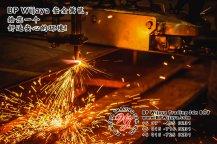 BP Wijaya Trading Sdn Bhd 马来西亚 彭亨 关丹 淡马鲁 文德甲 安全 篱笆 制造商 提供 篱笆 建筑材料 给 发展商 花园 公寓 住家 工厂 果园 社会 安全藩篱 建设 A01-66